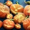 Halloween_Halloween___pumpkin_011251_