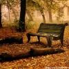 autumn-wallpaper1